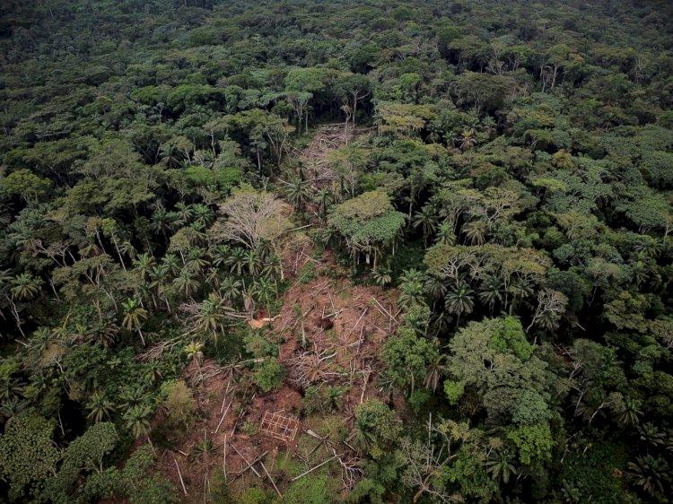 Nord-Kivu: «Un environnement sain peut stopper le développement des virus »